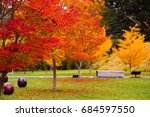 park with colorful foliage in... | Shutterstock . vector #684597550