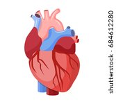 anatomical heart isolated.... | Shutterstock . vector #684612280