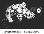 vector illustration ...   Shutterstock .eps vector #684619093