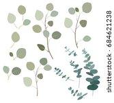 leaves of eucalyptus | Shutterstock .eps vector #684621238