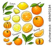 citrus fruits set whole and... | Shutterstock .eps vector #684693184