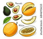 avocado  melon whole and slices ... | Shutterstock .eps vector #684693610
