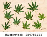 leaves of marijuana on a... | Shutterstock . vector #684758983