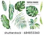 watercolor tropical floral...   Shutterstock . vector #684853360