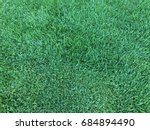 green grass floor texture... | Shutterstock . vector #684894490