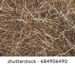 close up shot of root in soils | Shutterstock . vector #684906490
