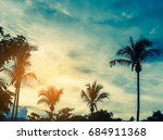 vintage tone silhouette shot of ...   Shutterstock . vector #684911368