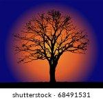 tree and sun | Shutterstock . vector #68491531