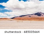 vicuna in the desert plateau... | Shutterstock . vector #685035664