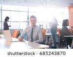 young entrepreneur freelancer... | Shutterstock . vector #685243870