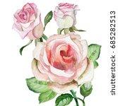 cute roses.watercolor | Shutterstock . vector #685282513