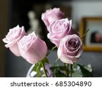 delicate off pink roses in soft ... | Shutterstock . vector #685304890