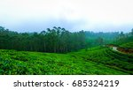 tea estate with hill station | Shutterstock . vector #685324219