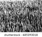 grunge dry grass texture  ... | Shutterstock .eps vector #685393018