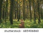 path lane walkway way for... | Shutterstock . vector #685406860