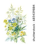 watercolor wildflowers and... | Shutterstock . vector #685439884