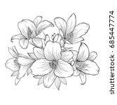 beautiful monochrome black and... | Shutterstock . vector #685447774