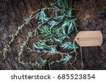 Small photo of Absinthium on wooden background