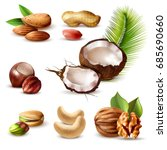 nuts realistic set with... | Shutterstock .eps vector #685690660