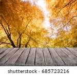 autumn nature background | Shutterstock . vector #685723216