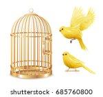 canary birdcage set of isolated ...