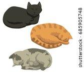set of sleeping cats | Shutterstock .eps vector #685905748