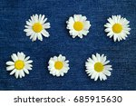 collage with six chamomile... | Shutterstock . vector #685915630