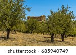 an olive grove provides a... | Shutterstock . vector #685940749