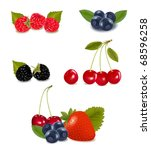 collection of berry fruits... | Shutterstock .eps vector #68596258