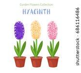 spring flower in flower pot....   Shutterstock .eps vector #686116486