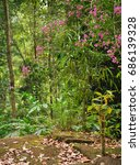 river flows in the jungle of... | Shutterstock . vector #686139328