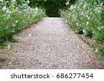 field flowers at both sides of... | Shutterstock . vector #686277454