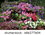 colorful garden flowers ... | Shutterstock . vector #686277604