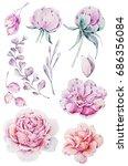 watercolor set of flowers ... | Shutterstock . vector #686356084