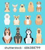 different dogs breed isolated... | Shutterstock .eps vector #686388799