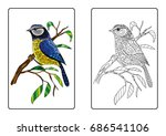 coloring page book   bird on... | Shutterstock .eps vector #686541106