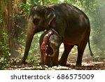 the friendship between the boy... | Shutterstock . vector #686575009