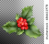 holly berry leaves christmas... | Shutterstock .eps vector #686611978