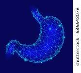 human healthy stomach. internal ... | Shutterstock .eps vector #686643076