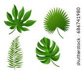tropical leaf  vector... | Shutterstock .eps vector #686741980
