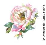 watercolor pink peony  flower.... | Shutterstock . vector #686854546