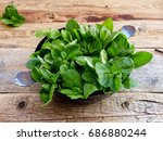 fresh aromatic herbs  mint on... | Shutterstock . vector #686880244