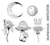 hand drawn beautiful set of a... | Shutterstock .eps vector #686922538