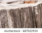 stump | Shutterstock . vector #687022924