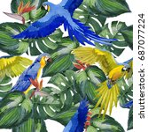 sky bird parrot pattern in a... | Shutterstock . vector #687077224