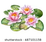 The Lotuses. Water Lilies...