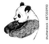 sketch panda with bamboo.... | Shutterstock . vector #687203950