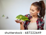 Stock photo parrot sitting on a girls hand and kissing her 687222649