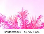 bright pink coco palm tree leaf ... | Shutterstock . vector #687377128