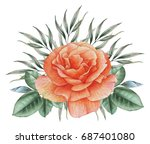 hand painted watercolor... | Shutterstock . vector #687401080